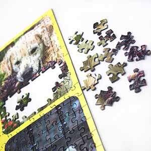 Photo Collage Puzzle 500 pieces - 500 Pieces